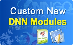 CS80010-Customize New DNN Modules (per hour)